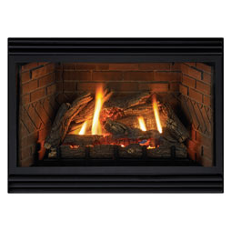 Empire Fireplace Insert
